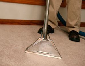 carpet cleaner in clearwater