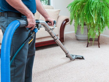 carpet cleaning in business